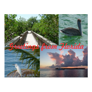 Greetings from Florida greeting map postcard