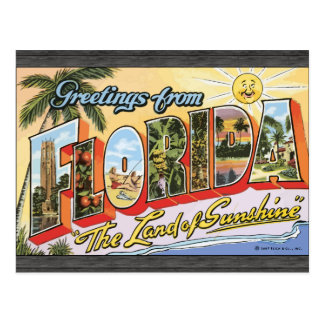 Greetings From Florida The Land Of Sunshine Vin Post Card