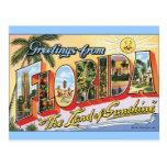 Greetings from Florida - Vintage Travel Postcard