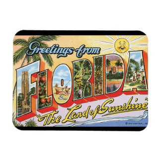 Greetings from Florida_Vintage Travel Poster Magnet