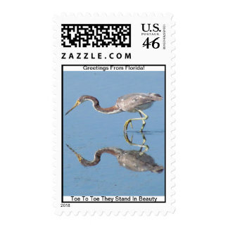 GREETINGS FROM FLORIDAseries-50 PROFIT TO SCHOOLS Stamps
