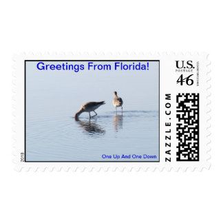 GREETINGS FROM FLORIDAseries-50 PROFIT TO SCHOOLS Postage
