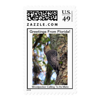GREETINGS FROM FLORIDAseries-50% PROFIT TO SCHOOLS Postage Stamps