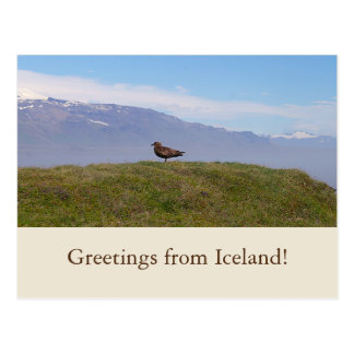 Greetings from Iceland! postcard