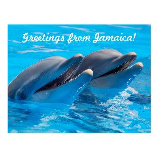 Greetings from Jamaica Postcard