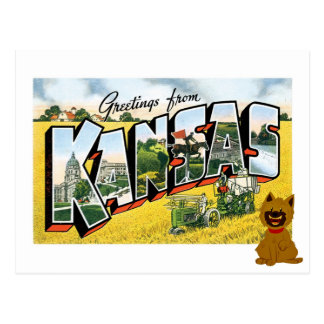 Greetings from Kansas! Cairn Terrier Toto Postcard