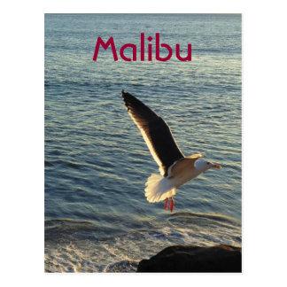 Greetings from Malibu Postcards