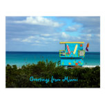 Greetings From Miami Postcard