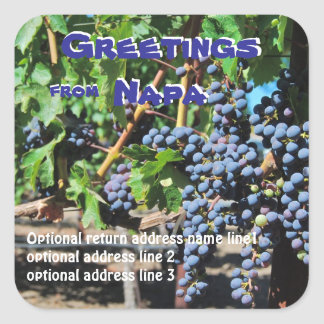 Greetings from Napa California  Address Label Square Sticker