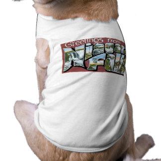 Greetings from Niagara Falls! Pet Tee Shirt