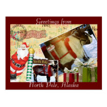 Greetings From North Pole, Alaska Postcard
