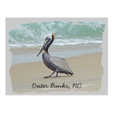 Beach Themed Greetings From Outer Banks OBX NC Postcard