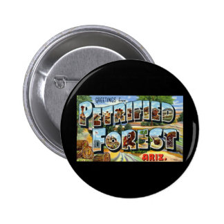 Greetings from Petrified Forest Arizona Pinback Button