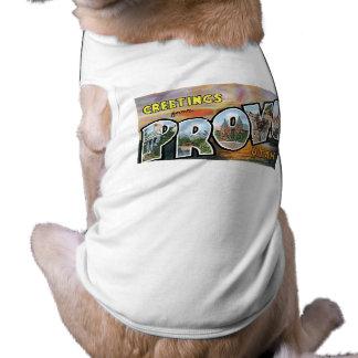 Greetings from Provo, Utah!  Retro Post Card Shirt