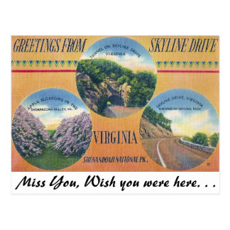 Greetings from Skyline Drive, Virginia Postcard
