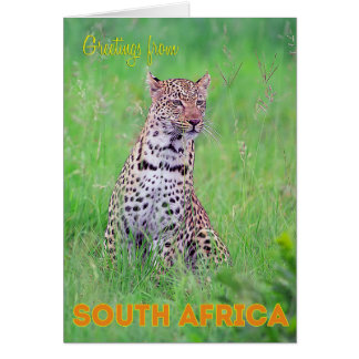 Greetings from South Africa Greeting Card