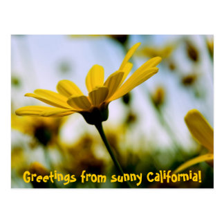 Greetings from sunny California! Postcard