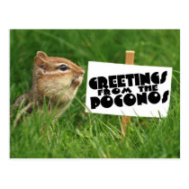 Greetings from the Poconos! Chipmunk with Sign Postcard