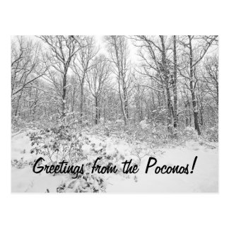 Greetings from the Snowy Poconos Postcard