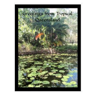 Greetings from tropical Queensland Postcard