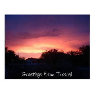 Greetings from Tucson! Postcard