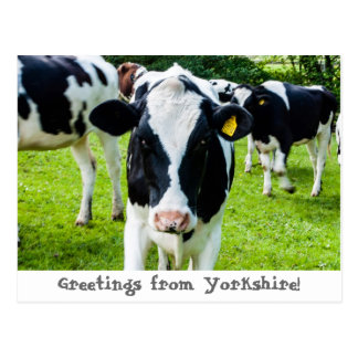 Greetings from Yorkshire Postcard