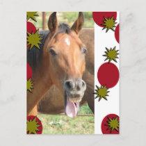 Greetings Holiday Postcard