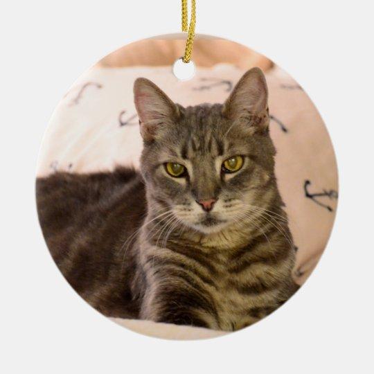 Greg tabby cat christmas ornament zazzle for Cat christmas ornaments craft