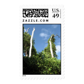 Grenadian Trees Postage Stamps