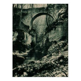 """Grenoble Bridge """"Grande Chartre"""" 1955 Replica Postcard"""