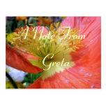 Greta Postcard