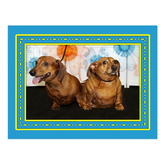 Gretchen and Moose - Dachshund -2 Postcard