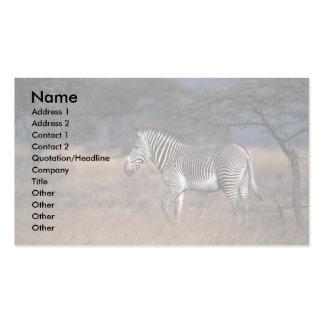 Grevy'a Zebra Business Cards