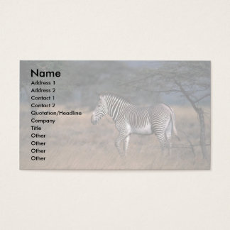 Grevy'a Zebra Business Card