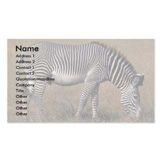 Grevy's Zebra Business Card Templates