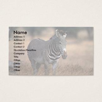 Grevy's Zebra Business Card