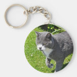 Grey and White Cat  Key Chain Key Chains