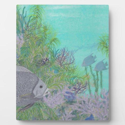 Grey Angelfish Blue Ocean Photo Plaque