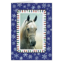 Grey Arabian Horse Blank Christmas Card