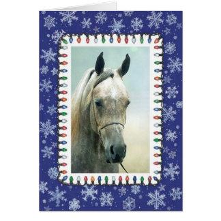 Grey Arabian Horse Blank Christmas Card