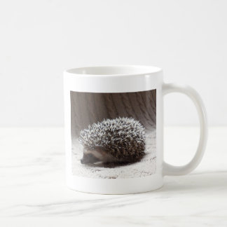grey baby hedgehog classic white coffee mug