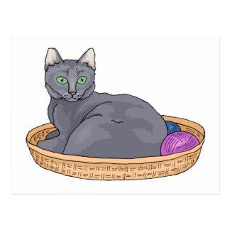 Grey Basket Cat Postcard