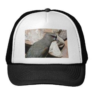 grey bird trucker hat