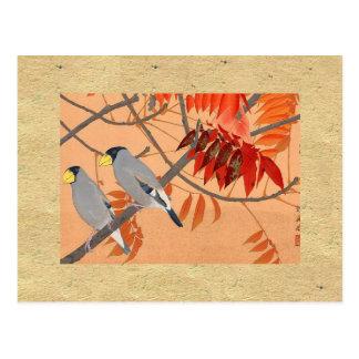 Grey Birds Vintage Postcard