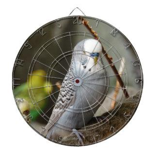 Grey Budgie Bird Dart Boards