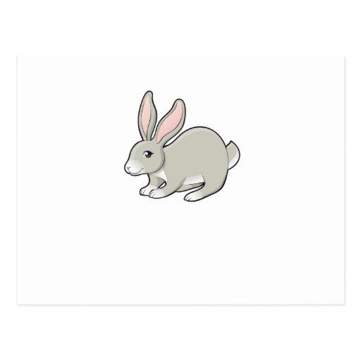 Grey Bunny Postcards
