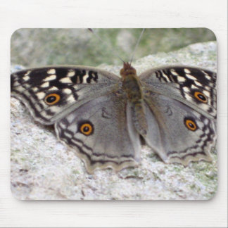 Grey Butterfly Colour Image - Mouspad Mouse Pad