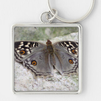 Grey Butterfly Image Premium Large Square Keychain