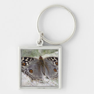 Grey Butterfly Image - Premium Square Keychain