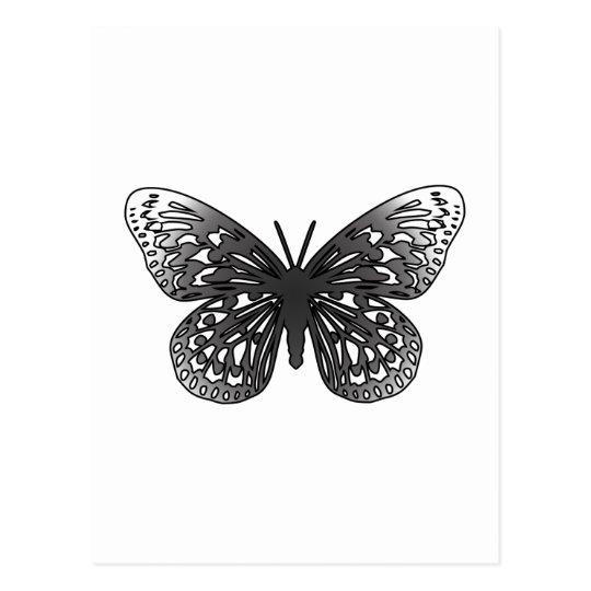 Grey Butterfly Postcard